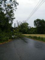 2010-07-12_01