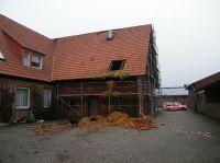 2010-01-19_06